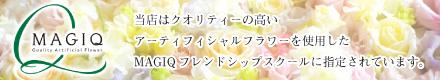 link_MAGIQ